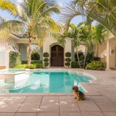 Courtyard Comfort