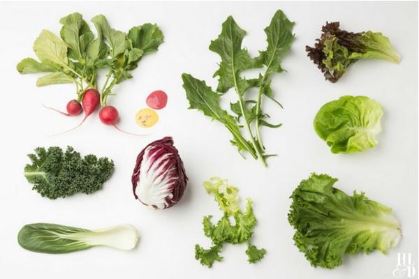 Get Your Green Goodness - Green Vegetables - Salad Ingredients